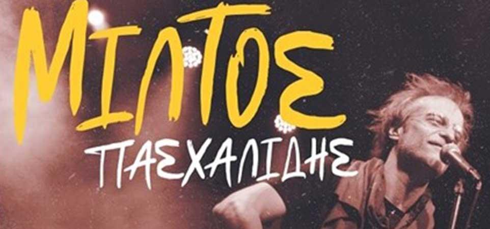 miltos-pasxalidis-3